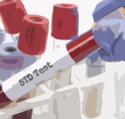 std test image